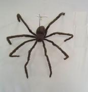 127cm Brown Spider Prop
