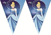 Cinderella Party Flag Banner