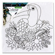 Colour My Canvas Toucan
