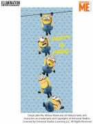 Despicable Me Door Banner