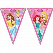 Disney Princess Flag Banner