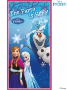Disney Frozen Door Banner