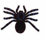 Flocked Spider Decoration
