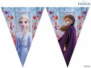 Frozen 2 Flag Banner