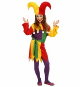 Girls Jester Costume