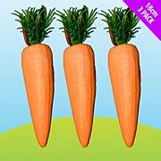 Glitter Carrots