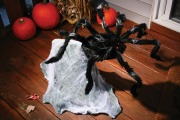 Giant Jumping Spider Prop