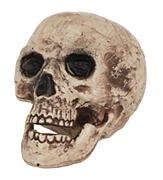 Large Skull Halloween Prop