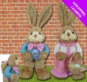 Mr N Mrs Bunny