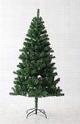Pine Snow Tree