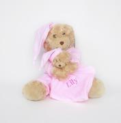 Personalised Teddy & Comforter