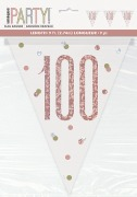 Rose Gold 100th Bunting
