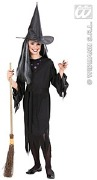 Scary Black Witch Costume