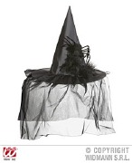 Spider Witch Hat