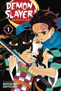 Demon Slayer Vol 01