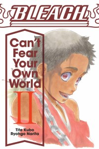 Bleach Can't Fear Your Own World Vol 02