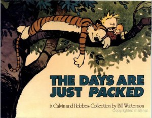 Calvin and Hobbes The Days Are Just Packed