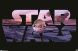 Star Wars The Mandalorian Child Pod Poster