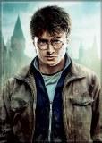 Harry Potter Harry Standing Magnet