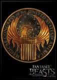 FB Gold LogoMagnet