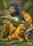 Black Panther with Cats Magnet
