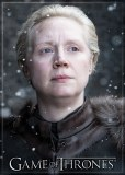 Game of Thrones Brienne of Tarth Magnet