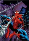 "Amazing Spiderman 24 2.5"" x 3.5"" Magnet"