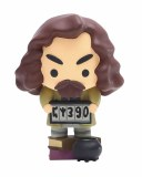 Harry Potter Sirius Black Charms 3.5 in Style Figure