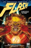 Flash Rebirth TP Vol 04 Running Scared