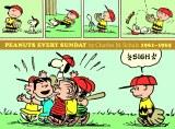Peanuts Every Sunday HC Vol 03 1961-1965