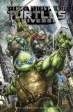 Teenage Mutant Ninja Turtles Universe TP Vol 01