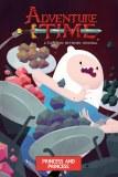 Adventure Time Original GN Vol 11 Princess & Princess