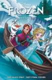 Disney Frozen Comics Coll TP Travel Arendelle