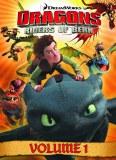 Dragons Riders of Berk GN Vol 01