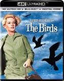 Birds 4K UHD & Blu ray
