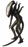 Alien Xenomorph MAFEX AF