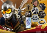 Hot Toys Ant-Man and the Wasp The Wasp Action Figure