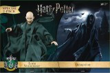 Harry Potter and the Goblet of Fire Dementor/Voldemort 1/8 Coll AF 2Pk