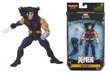 Marvel Legends Age of Apocalypse X-Men Weapon X AF
