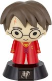 Harry Potter Harry Quidditch Icon Light