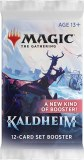 Magic The Gathering Set Booster
