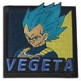 Dragon Ball Super Broly SSGSS Vegeta Patch