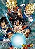 Dragon Ball Super Battle Of The Gods 5 Wall Scroll