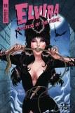 Elvira Mistress of Dark #11 Cvr C