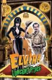 Elvira Meets Vincent Price #3 Cvr B