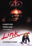 Link DVD