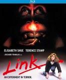 Link Blu ray
