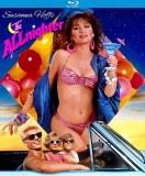 Allnighter Blu ray