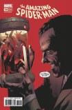 Amazing Spider-Man #794 5Th Ptg Immonen Variant Leg Ww