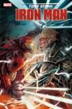 Tony Stark Iron Man #17